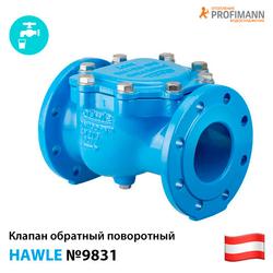 Клапан обратный поворотный Hawle 9831 Ду50-200 Ру10/16