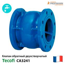 Клапан обратный пружинный фланцевый Tecofi CA3241 Ду 50-300 Ру16